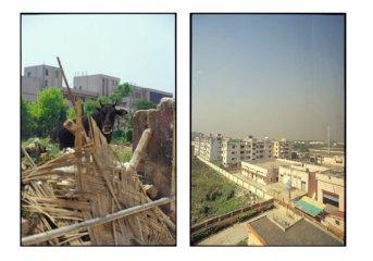 Bull and Skyline - Salt Lake City District, Kolkata, India   2002