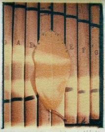 Xyleaf | polaroid transfer on cotton paper