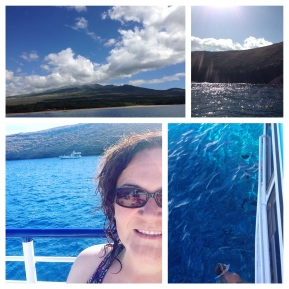 Day 4: Snorkeling trip to Molokini (sunken crater)