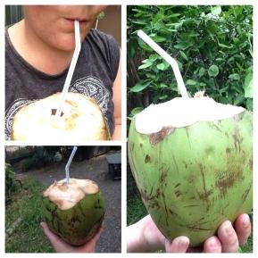 I Heart Coconuts!