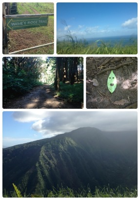 Day 5: Hiking part 2 - the Waihe'e Ridge Trail