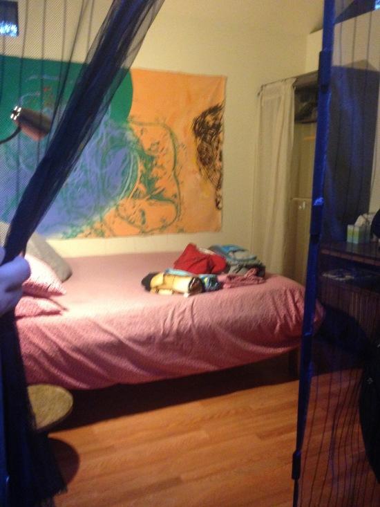 Handy magnetic mosquito net door!